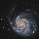 M101 the Pinwheel galaxy,                                Gianluca Belgrado