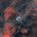 Crescent Nebula in hoo,                                Ioan Popa