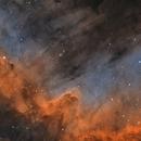 Cygnus Wall ,                                Bert Scheuneman