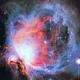 M42 Great Orion Nebula,                                James Baguley