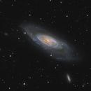 Messier 106 in Canes Venatici,                                Steve Milne