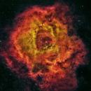 Sh2-275 Rosette Nebula,                                Reg Pratt