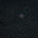 cocoon nebula,                                jruffo