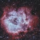 Rosette Nebula (narrowband colour),                                Michelle Bennett