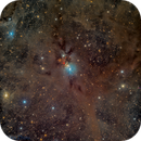 NGC-1333 @ DSW,                                Miles Zhou