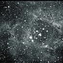 NGC 2244 + NGC 2237 (Rosette Nebula) - Greyscale,                                Stefano Tosi