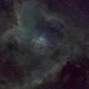IC 1805 The Heart Nebula,                                Aaron Hakala