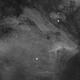 Pelikan-Nebel,                                Badi