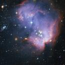 NGC 602 - Cluster in SMC,                                Steven Marx
