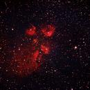 NGC 6334 The Cat's Paw Nebula,                                Marc Silva