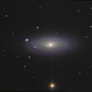 NGC 2841,                                Frank Colosimo
