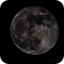 Luna,                                Ark88