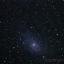 Triangulum Galaxy M33,                                Vital