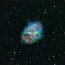 M1 Crab Nebula,                                Mark Wetzel