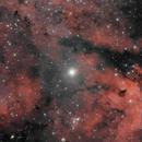 IC 1318,                                Giuseppe Bertaglia
