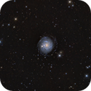 NGC 3344  LRGB,                                GJL