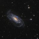 NGC5033,                                Andy Ermolli