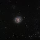 NGC3631 Galaxy,                                Sascha Schueller