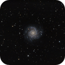 Messier 74,                                Danny Flippo