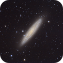 NGC253 Sculptor Galaxy,                                CarlosSagan