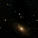 M81 with Bresser Pluto/S,                                Frank Schmitz