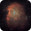 NGC2174 -Monkey Head Nebula.,                                Sergei Sankov