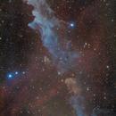 IC 2118 Witch Head Nebula,                                Stefan Westphal