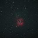 Trifid Nebula,                                David Johnson
