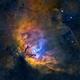 Tulip Nebula (Sh2-101) close-up in HSOrgb,                                Jose Carballada