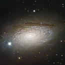 The Sunflower Galaxy (data by Jim Misti),                                Arun H.