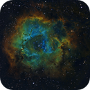The Rosette Nebula,                                Samara