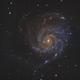 M101 – Pinwheel Galaxy,                                Irving Pieters