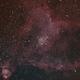 Heart Nebula,                                Chris W
