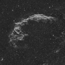 NGC6995 Veil Nebula,                                S. DAVID