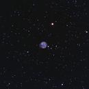 NGC 7048, planetary nebula in Cygnus,                                Roberto Marinoni