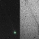 Comet Lovejoy (C/2014 Q2),                                Kiyoshi Imai