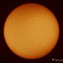 Sun - Full Disk 4/6/2020,                                Damien Cannane