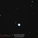Blue Snowball - High Mag,                                Hal Gottfried
