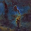 IC1396 Elephant Trunk Nebula,                                Stan Smith