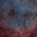 IC 1396 - The Elephant Trunk Nebula - (H-SOO),                                Andrea Alessandrelli