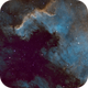 Cygnus wall,                                Scott Richards