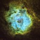 Starless Rosette Nebula in SHO,                                Jeff Ridder