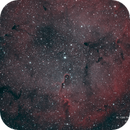 IC 1396 - The Elephant Trunk - Bi Color,                                Michael Blaylock