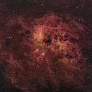 IC 410: A Molecular Cloud in Turmoil,                                Alex Woronow