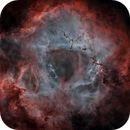 The Rosette Nebula (a Special Red Rose) *** AAPOD ***,                                Ruben Barbosa