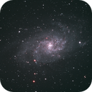 M33,                                bebert42