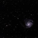M101,                                tintin2010