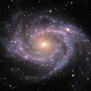 NGC 2997, Grand Design Spiral Galaxy,                                Ruben Barbosa