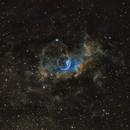 Bubble Nebula,                                Rich Christy
