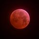Lunar Eclipse 2019,                                Michael Heimbach